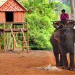 Des réserves cambodgiennes idéales